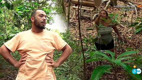 Jungle, Natural environment, Adaptation, Rainforest, Botany, Plant, Forest, Terrestrial plant, Tree, Plantation,