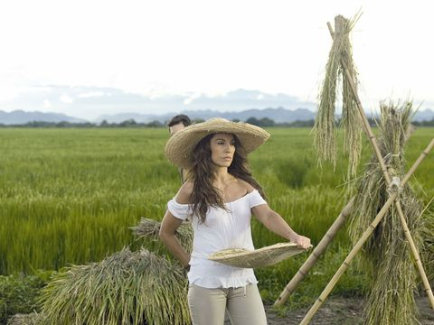 People in nature, Agriculture, Field, Paddy field, Grass family, Crop, Grass, Plant, Grassland, Prairie,