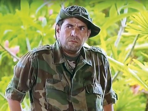 Soldier, Military camouflage, Military uniform, Army, Uniform, Adaptation, Jungle, Military, Military person, Plant,