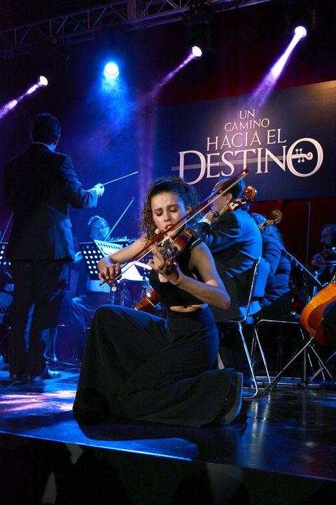 Musical instrument, String instrument, Musician, Entertainment, Performing arts, Music, Plucked string instruments, Musical instrument accessory, String instrument, Music artist,