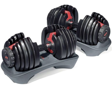 Bowflex Select Tech 552 Dumbbells