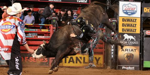 Shane Proctor Professional Bull Rider