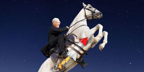 Bridle, Horse, Horse tack, Horse supplies, Halter, Space, Working animal, Rein, Bit, Stallion,