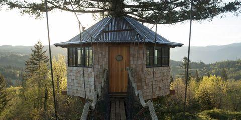 Wood, Window, Property, Tree, Roof, Building, House, Fixture, Door, Rural area,