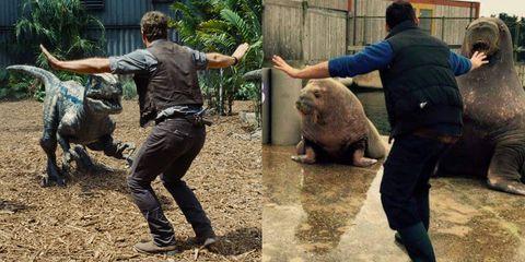 chris pratt jurassic world zookeeper meme