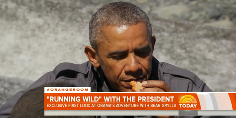 Obama Eats Salmon Half-Chewed By a Bear on Running Wild