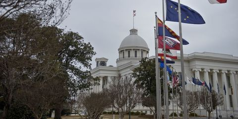 Flag, Branch, Tree, Government, Dome, Landmark, Dome, Pole, Official residence, Trunk,