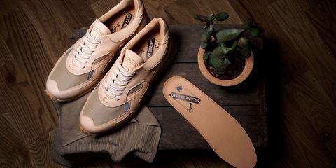 Footwear, Brown, Shoe, White, Flowerpot, Tan, Beige, Houseplant, Walking shoe, Brand,