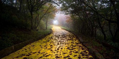 Follow the Yellow Brick Road to Hell in These Pics of an Abandoned Wizard of Oz Park