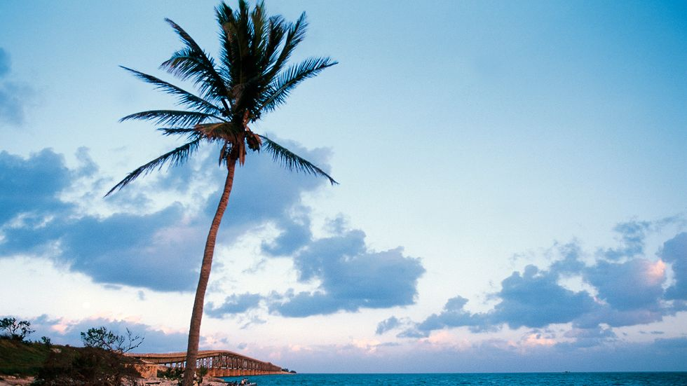 Searching the Sunny Florida Keys for Netflix's Darkest Show