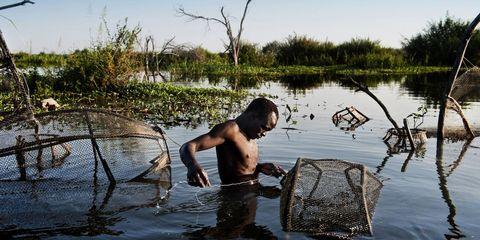 Water, Natural landscape, Wetland, Marsh, Bank, Lake, Freshwater marsh, Barechested, Fen, Bathing,