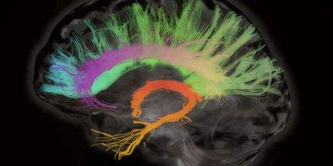 The Reality of Brain-to-Brain Communication Is Closer Than You Think