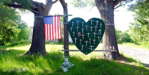 Branch, Leaf, Tree, Flag, Woody plant, Heart, Trunk, Holiday, Garden, Love,