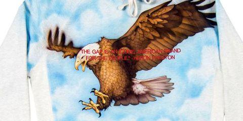 Organism, Vertebrate, Bird, Beak, Wing, Accipitridae, Bird of prey, Adaptation, Accipitriformes, Falconiformes,
