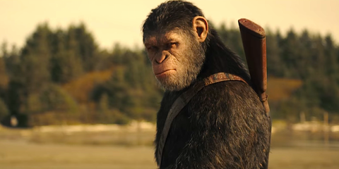 Why Does This New Planet of the Apes Movie Look So Damn Good?
