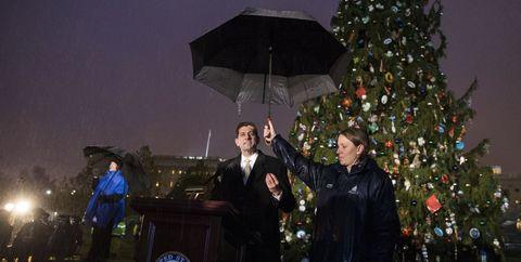 Christmas decoration, Winter, Christmas tree, Holiday, Christmas ornament, Podium, Umbrella, Ornament, Christmas, Christmas eve,