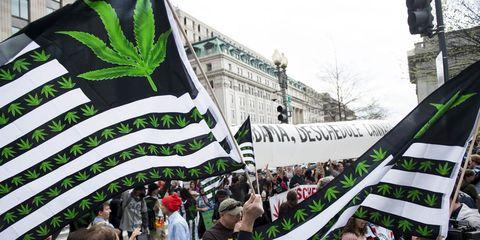 Green, People, Crowd, City, Urban area, Street light, Protest, Traffic light, Flag, Rebellion,