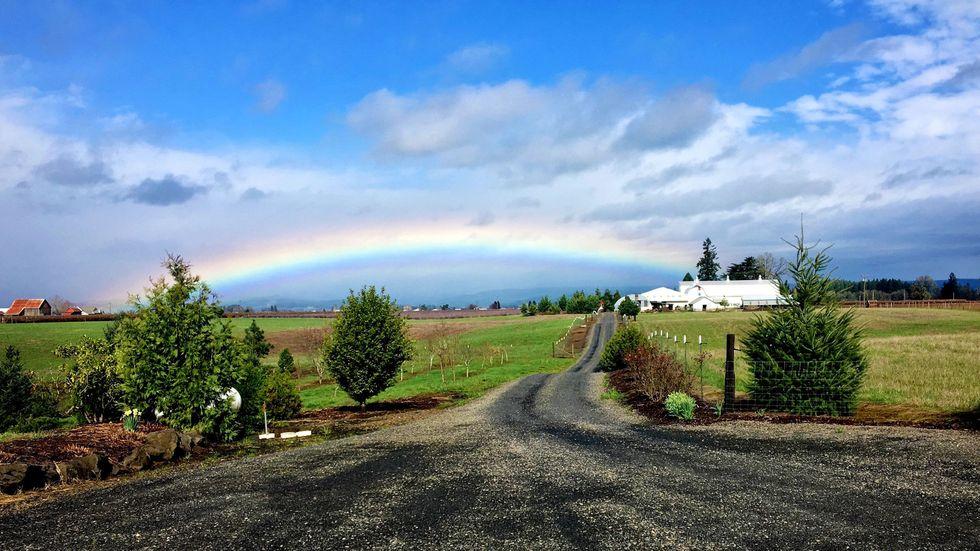 The Coolest Cannabis Farm in Oregon