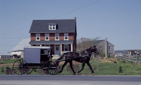 Horse and buggy, Horse harness, Carriage, Vehicle, Horse, Wagon, Horse tack, Mode of transport, Cart, Rein,