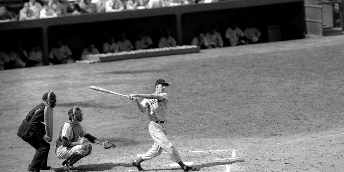 What Do You Think of Ted Williams Now - Biography of Ted Williams How To Measure Bat Window Well Covers on privacy window well covers, measuring window well covers, home window well covers,
