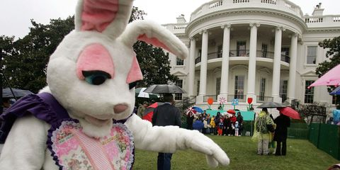 Mascot, Easter bunny, Rabbit, Rabbits and Hares, Event, Costume, Fur, Ear,