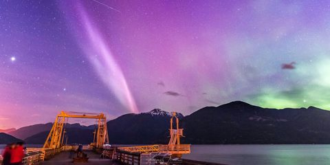 Scientists Just Discovered a New Aurora and They're Calling It Steve