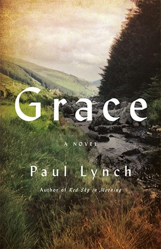 fall from grace a novel random house large print