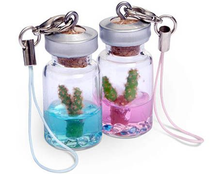 Tiny Cactus - Cell Phone Accessory Gifts on tiny bamboo, tiny moon, tiny trees, tiny earth, tiny plants, tiny blanket, tiny island, tiny succulents, tiny terrariums, tiny tomatoes,