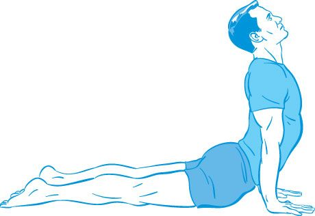 5 Yoga Poses Positions