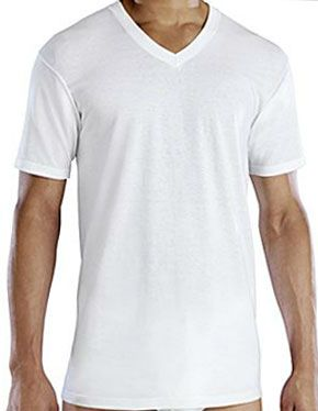 a0c8df6708f3 The Best Value: Fruit of the Loom Premium V-Neck
