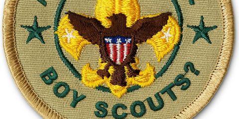 Yellow, Textile, Symbol, Emblem, Pattern, Wing, Badge, Crest, Accipitriformes, Symmetry,