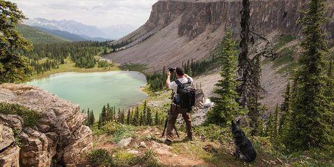 Mountainous landforms, Highland, Mountain, Valley, Outdoor recreation, Hill, Adventure, Wilderness, Mountain range, Carnivore,