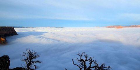 Branch, Sky, Cloud, Atmosphere, Twig, Atmospheric phenomenon, Geological phenomenon, Calm,