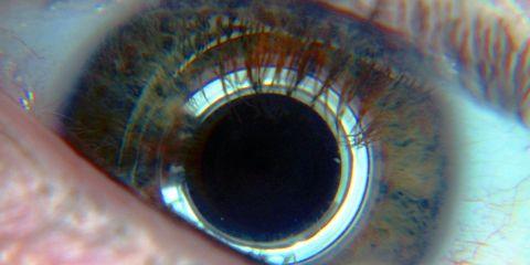 Blue, Colorfulness, Eyelash, Iris, Organ, Photography, Tints and shades, Close-up, Space, Circle,