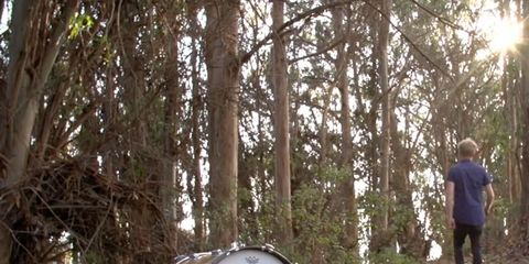 Branch, Natural environment, Drum, Membranophone, People in nature, Drumhead, Woody plant, Sun, Sunlight, Forest,
