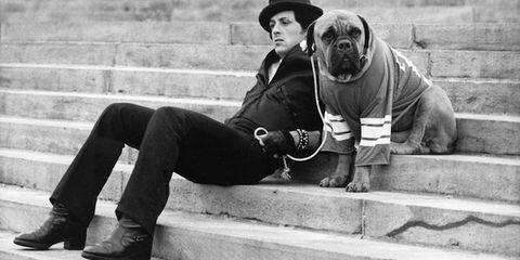 Hat, Jeans, Dog breed, Sun hat, Carnivore, Sitting, Dog, Monochrome, Street fashion, Stairs,
