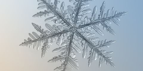 How to Photograph Snowflakes—With a Really Cheap Camera