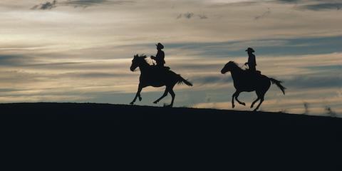 New Mexico cowboys