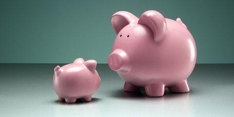 Saving, Pink, Snout, Piggy bank, Suidae, Toy, Animal figure, Domestic pig, Livestock, Figurine,