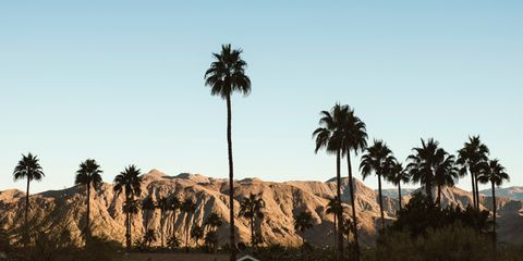 Style Across America: Palm Springs