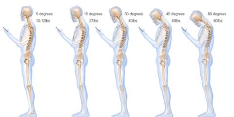 Organism, Shoulder, Human anatomy, Standing, Joint, Bone, Line, Jaw, Organ, Chest,
