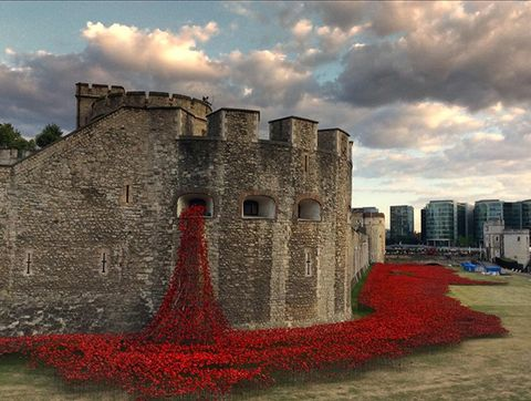 Tower of London Is Being Flooded With 886,246 Poppies
