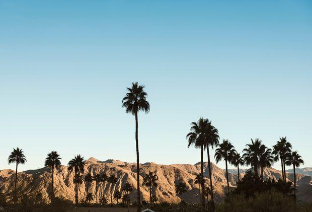 Men seeking men palm springs