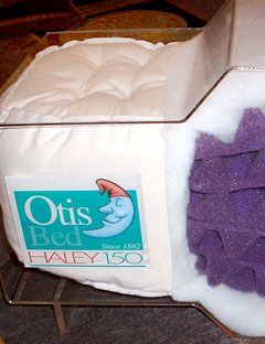 The Otis Bed Haley 150 Futon How To Sleep Better