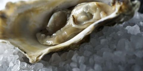 Close-up, Natural material, Seafood, Bivalve, Molluscs, Shell, Macro photography, Delicacy, Marine biology,