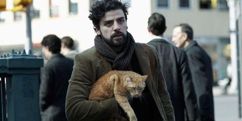 Human, Mammal, Carnivore, Small to medium-sized cats, Felidae, Whiskers, Facial hair, Street fashion, Cat, Fur,