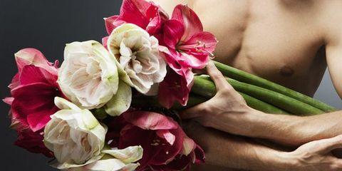 Petal, Flower, Pink, Cut flowers, Flowering plant, Botany, Floristry, Flower Arranging, Rose family, Bouquet,