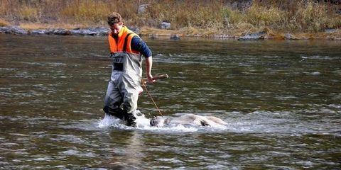 Outdoor recreation, Lake, Adventure, River, Fluvial landforms of streams, Animal training, Fisherman, Fishing, Stream,