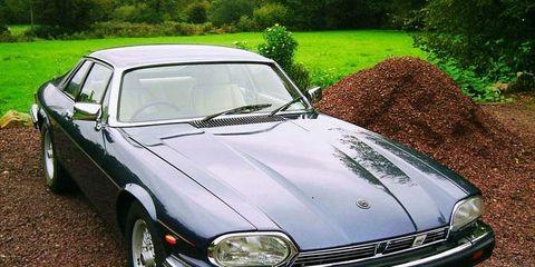 Tire, Nature, Vehicle, Land vehicle, Automotive design, Hood, Automotive parking light, Car, Headlamp, Automotive lighting,