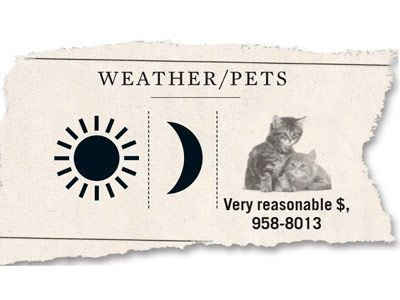 weather and pets